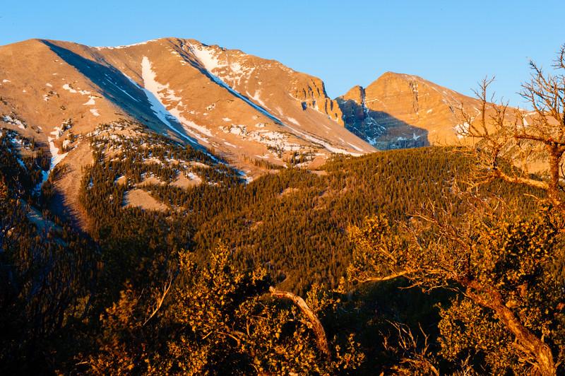 20130601-02 Great Basin 226.jpg