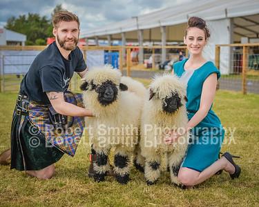 NSA Scotland Fashion Show @Royal Highland Show 2015