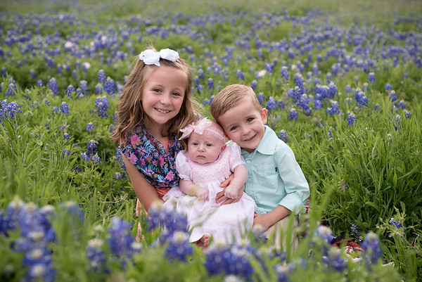 Taylor Family Bluebonnets