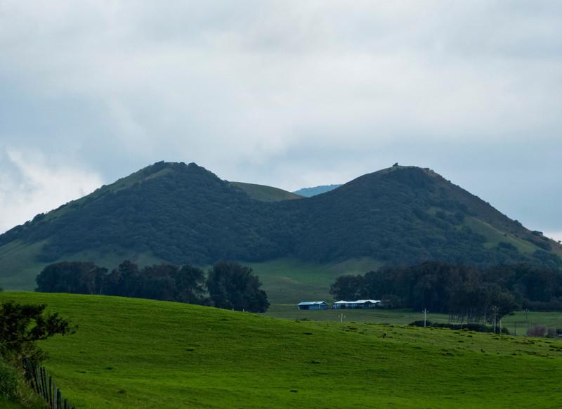 Pu'u Maile seen from Kohala Mountain Road.