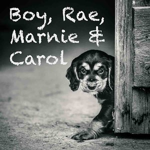 Boy, Rae, Marnie & Carol