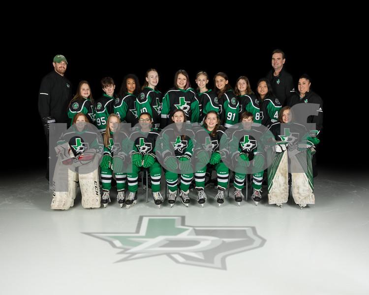 2020-01-31 DSE Girls u14 Tier II Fulton