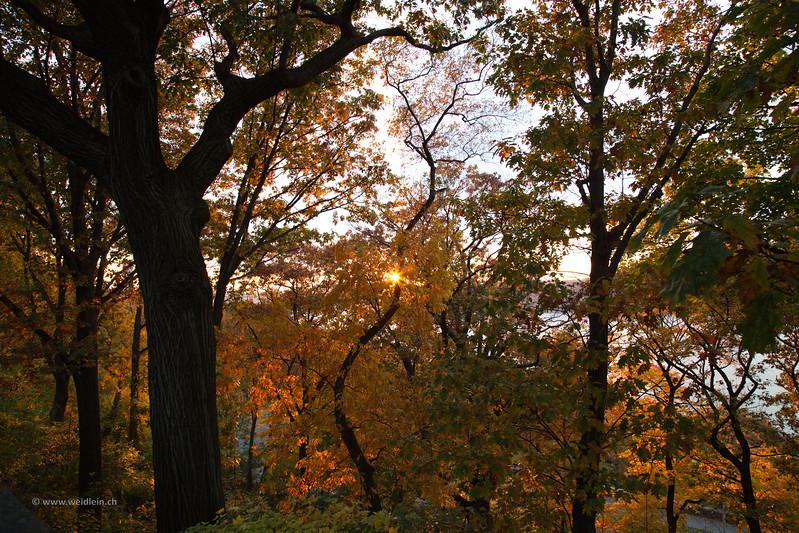 2014_NYC_16.jpg