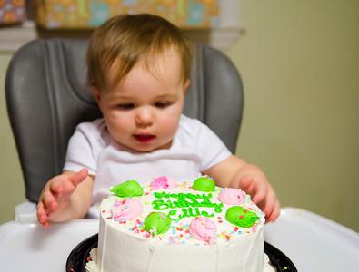 Ellie's First Birthday!