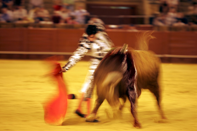Motion blurred bullfight action. Bullfight at Real Maestranza bullring, Seville, Spain, 15 August 2006.