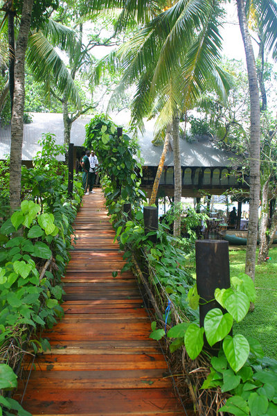 """A wooden bridge led to the main building.  This place was used for the Sri Lankan version of """"Fear Factor"""" and had climbing walls and ropes hanging from trees.  It was either that or some kind of commando training center!"""