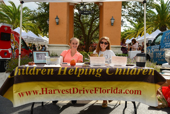 Harvest Drive  Weston Town Center 11-13