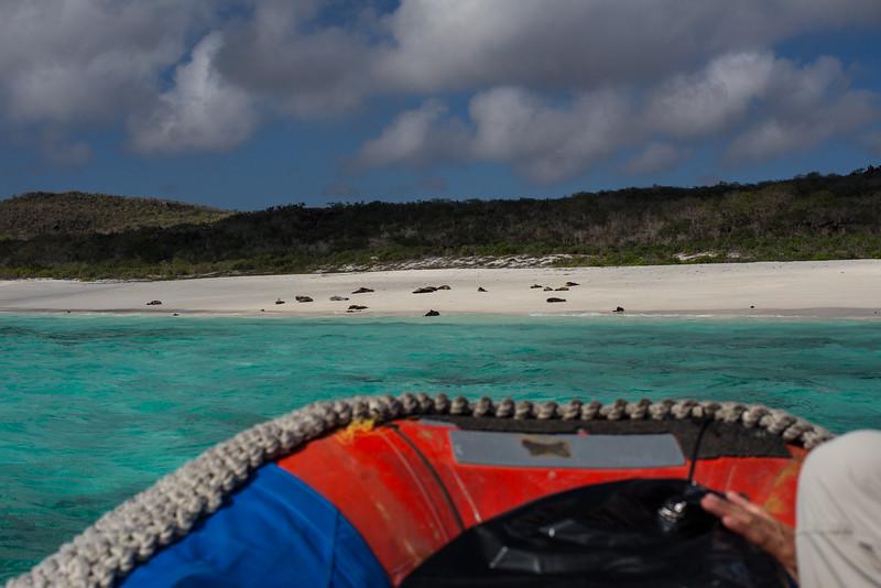 Galapagos_MG_4360.jpg