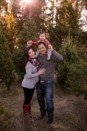 Christmas Tree Farm Minis 2016