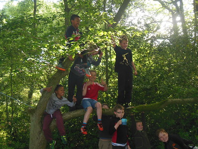 2017-06-03 Cub & Scout Survival Camp at Sherrat's Wood