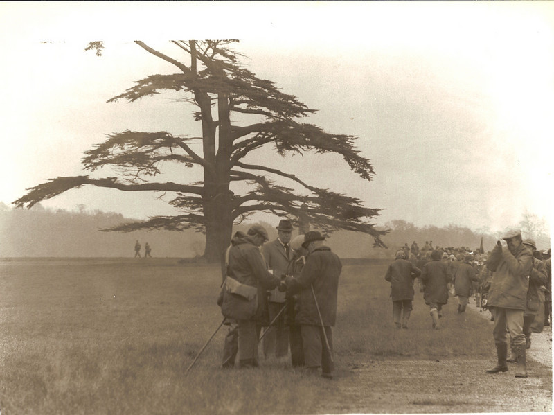 Judges confer at Duke's Cedar.jpg