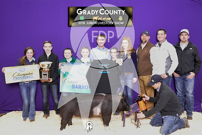 Grady County Jr. Livestock Show