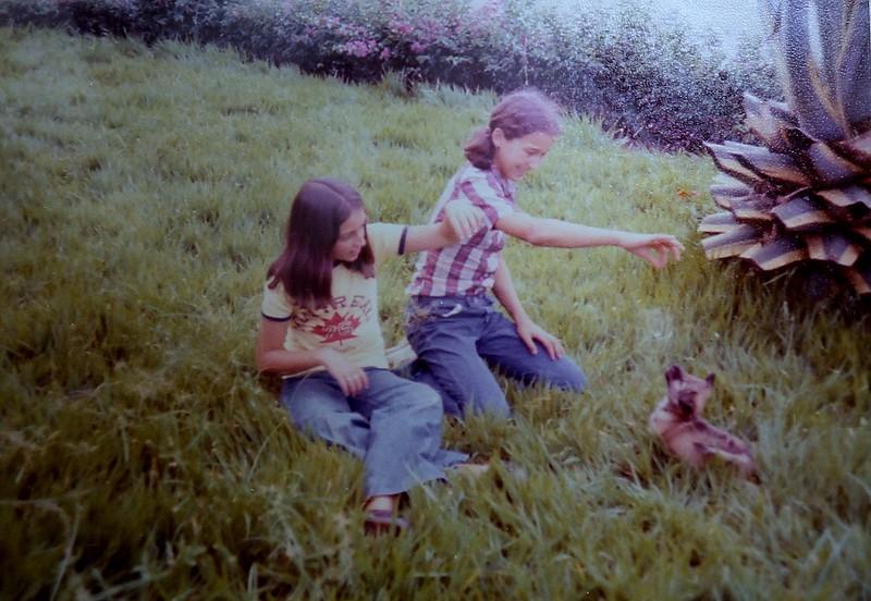 Dundo em 1977