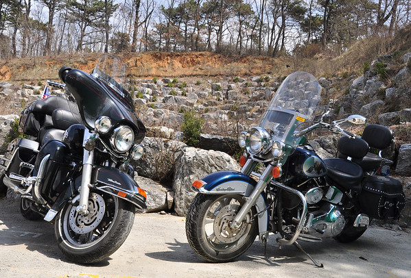 Two harleys