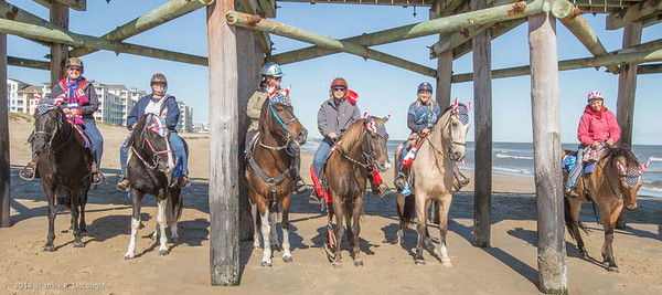 2018 November 3 VB Mounted Police Little Island Pier Ride