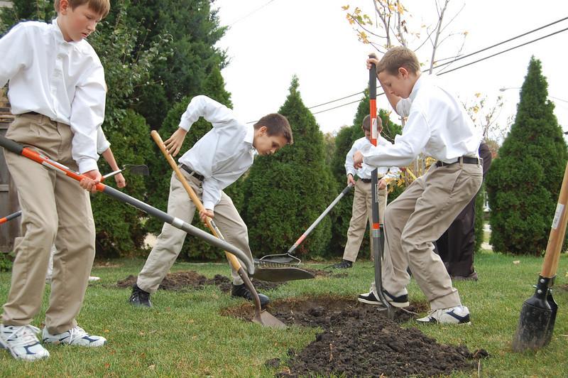 Planting Tree (4).JPG