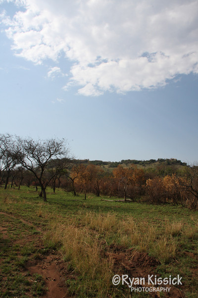 A beautiful day in Grumeti Reserve