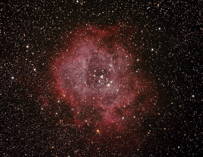 Caldwell 49 & 50 - NGC2237-9,NGC2244, 2246 - Rosette Nebula and Open Cluster in Monoceros - 30/11/2013 (Processed cropped stack)
