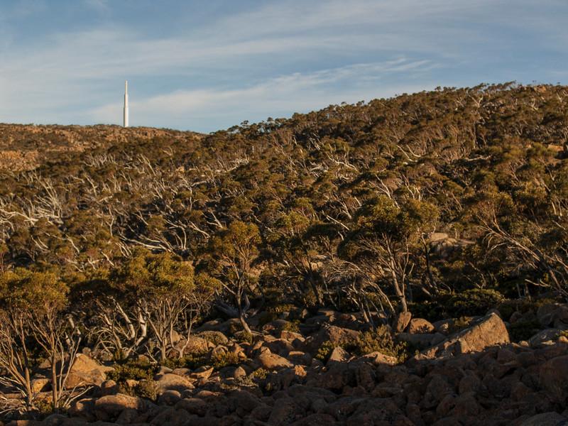 Australia-01793.jpg