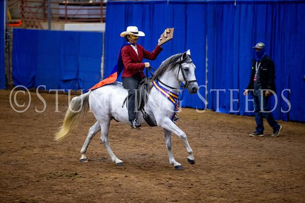 135 Super Horse Agility
