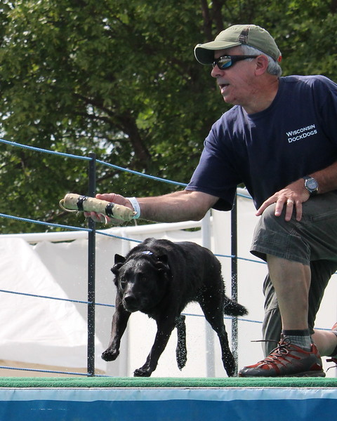 2015.8.6 Winnebago County Fair Dock Dogs (81).JPG