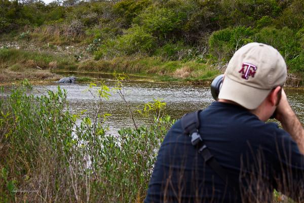 2011 Aransas National Wildlife Refuge