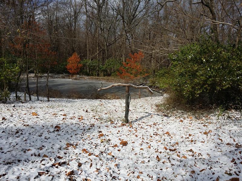 First snowfall, winter 2014