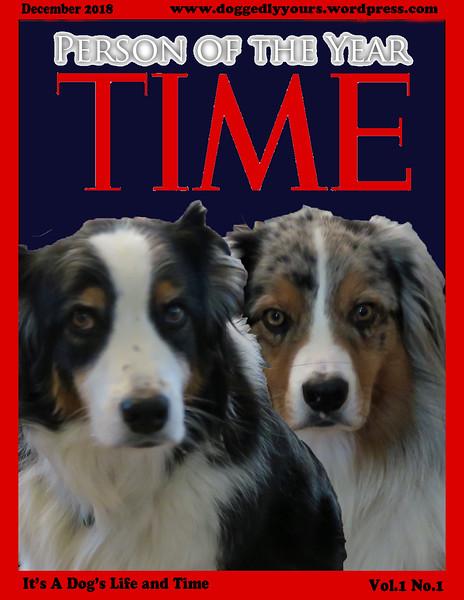 TimeMag.GaWy.jpg