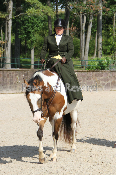 Walk Trot Equitation (Saturday)