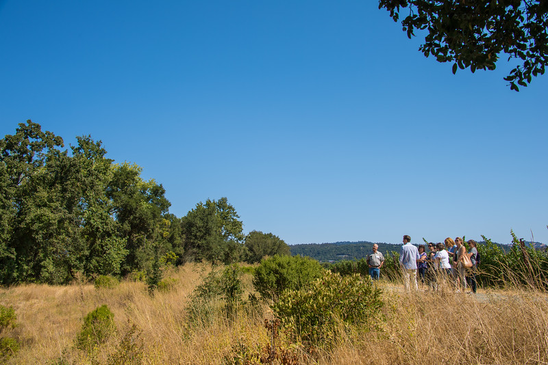 Vineyard visitors learn about land management practices that protect the Napa Valley watershed.  Photo courtesy of Napa Valley Vintners