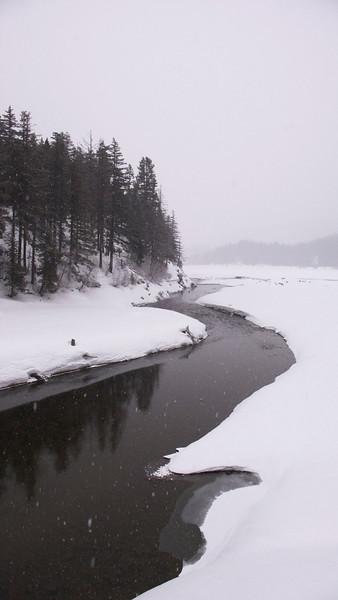 Jan 26, 2008 (Lake Easton State Park)