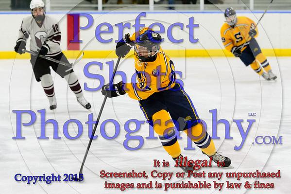 Ice Hockey ----- ( 2015 - 2016 )