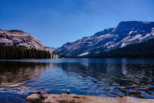 Yosemite High Country and Sonora Pass-Summer 2017