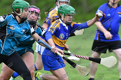 Camogie #2
