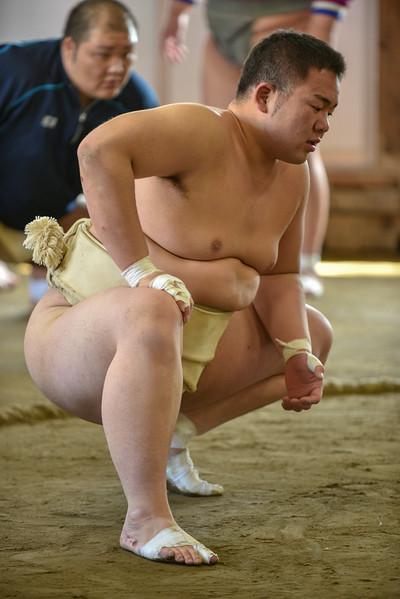 Gr.2 Nodai Sumo-1091.jpg