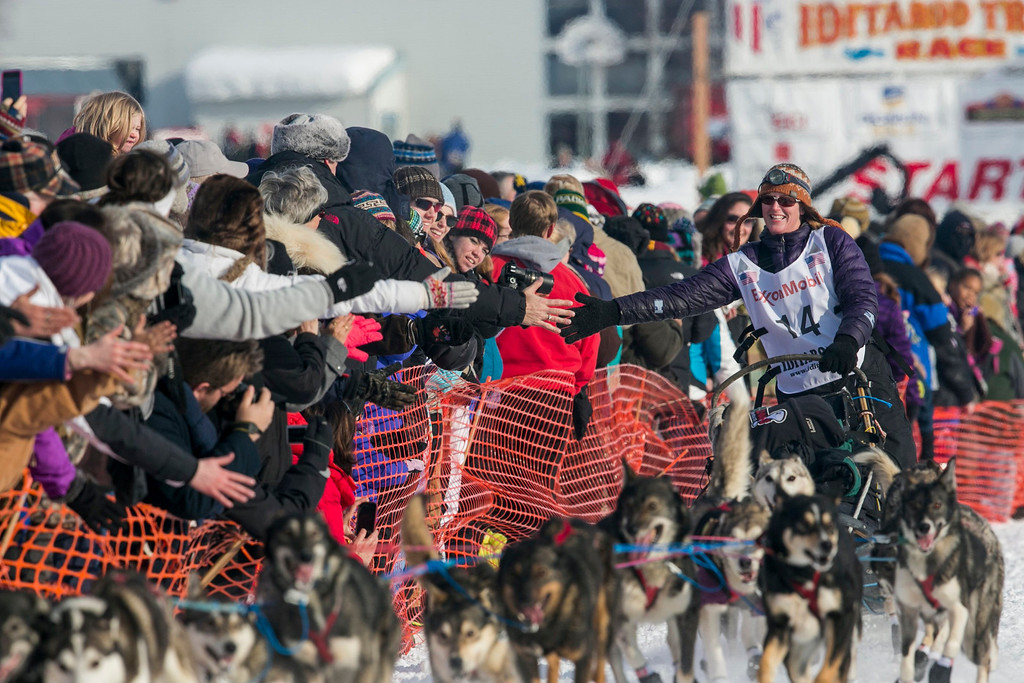 . Paige Drobny of Fairbanks heads out of the gate at the re-start of the Iditarod dog sled race in Willow, Alaska March 3, 2013. From Willow, the race runs for almost 1000 miles as it crosses the state. REUTERS/Nathaniel Wilder