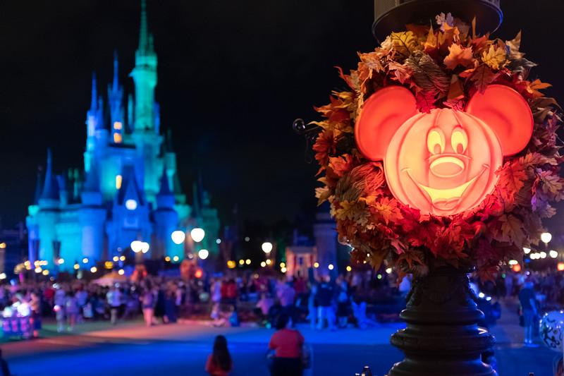 Disney-8141.jpg