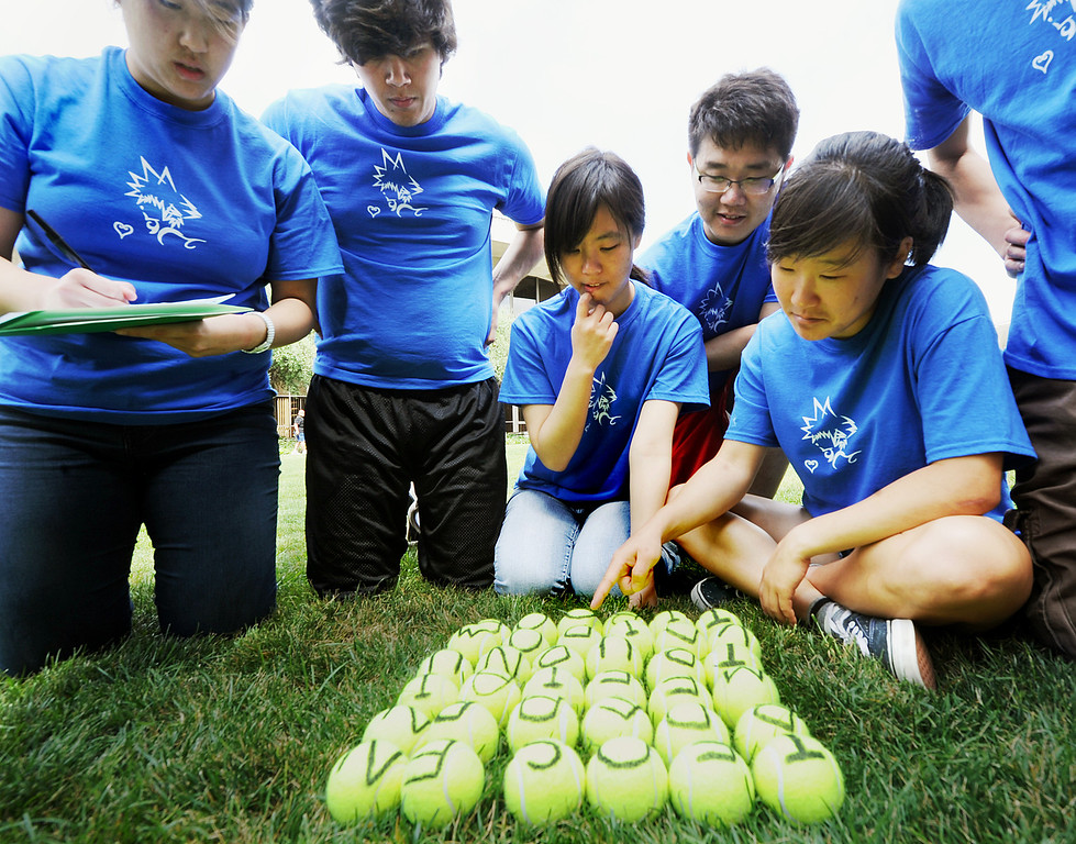 . Students in the Kingdom Hearts Stack trying to make as many words from letters printed on tennis balls during Cal Tech Ditch Day.  A fun-filled day of antics and escapades, Ditch Day is one of Caltech�s oldest traditions � a cross between Animal House and a science fair! Friday, May 24, 2013. Caltech seniors ditch their classes while underclassmen devote their entire day to quirky pranks and attempting to solve elaborate puzzles, mazes, quests, and other challenging hijinks that seniors have devised and left behind for them.This year�s activities include a laser maze, sledgehammer brick building demolition, shopping cart race, sumo tournament, roof rappelling, hovercraft human bowling, teleportation and time-travel puzzles, and much more.(SGVN/Photo by Walt Mancini)