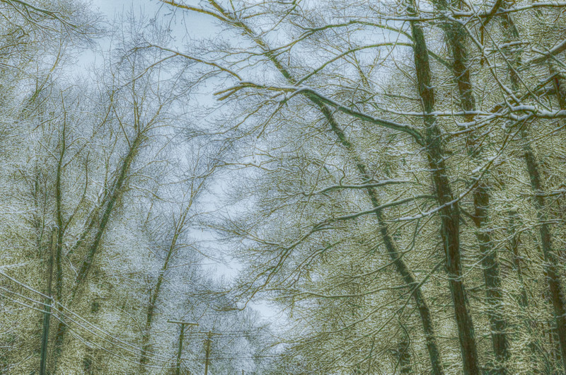 untitled-93_HDR 2.jpg