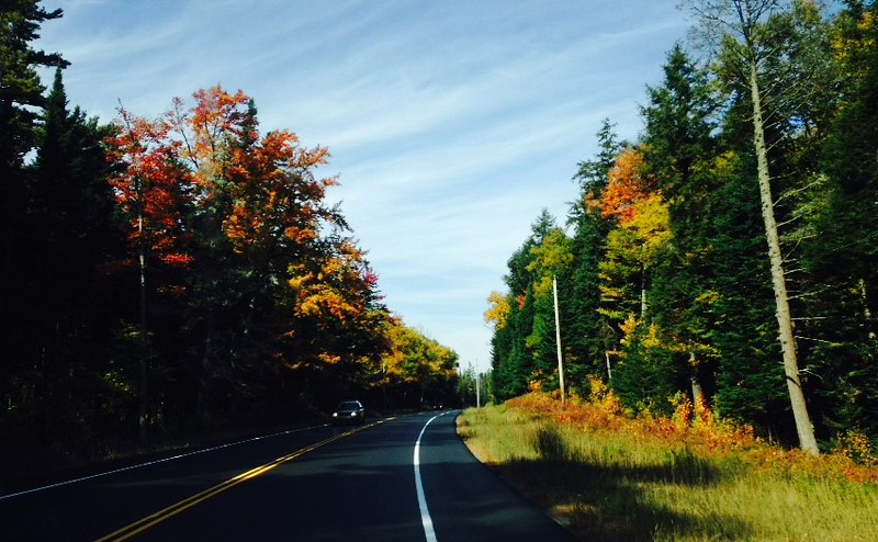 red and gold fall color bordering a two-lane road