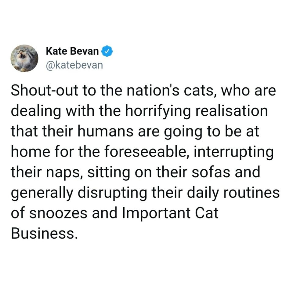 A funny tweet from @katebevan that I saw around this time: