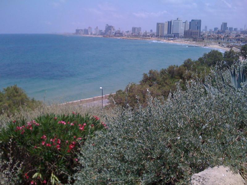israel507.jpg