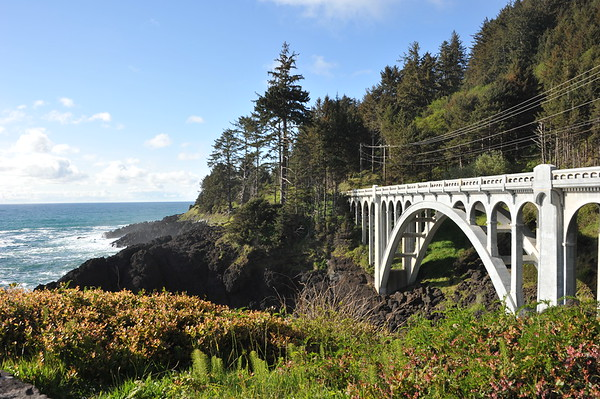 Otter Crest Loop Bridge Area