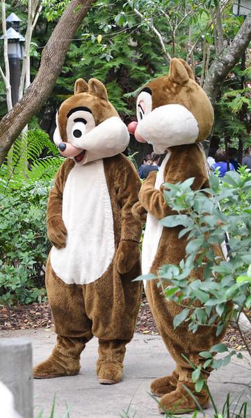 Disney Animal Park March, 2013-DSC_0312-017.jpg