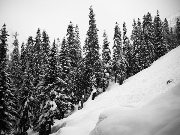 Alpental Snowshoe
