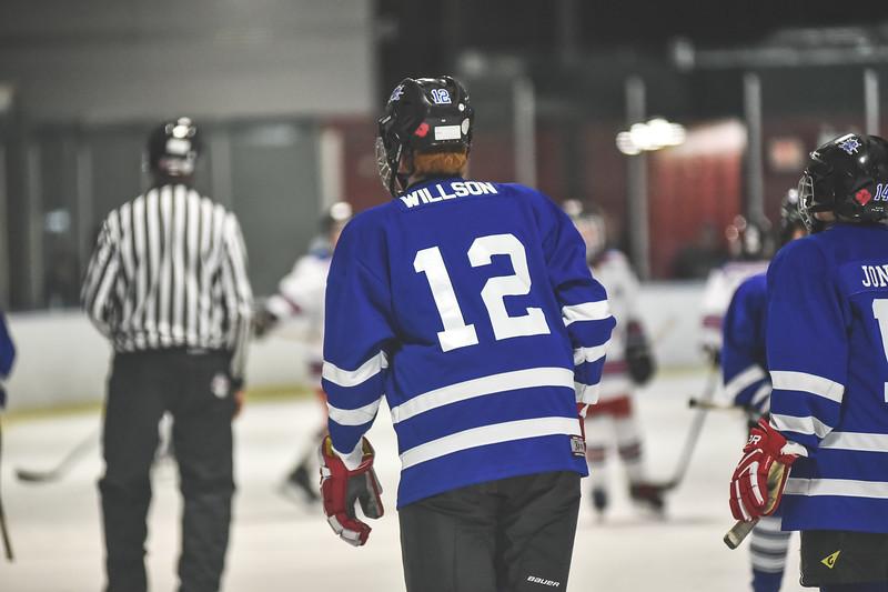 Leafs-59.jpg