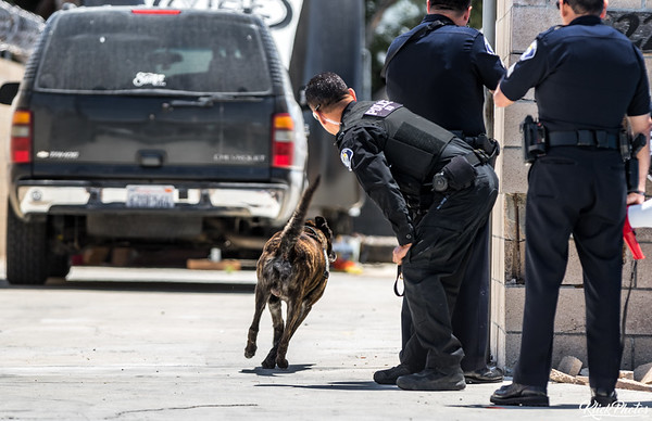 Santa Ana Burglary Search - May 27th, 2017