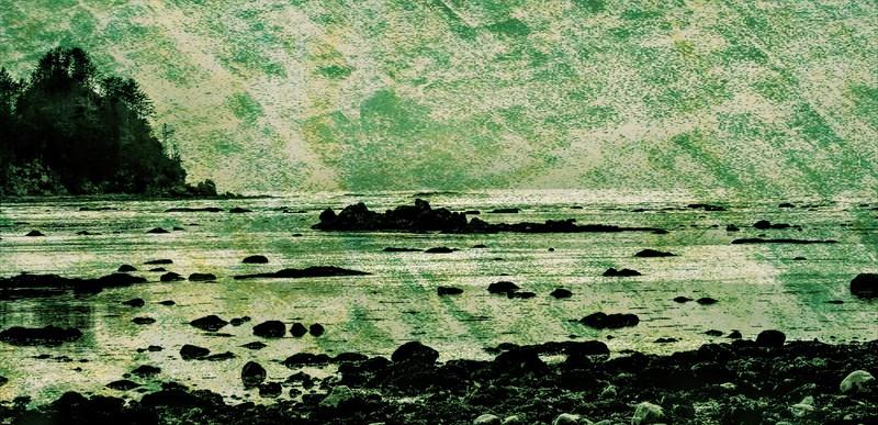 20090418 - 119- Cape Alava-studio.jpg