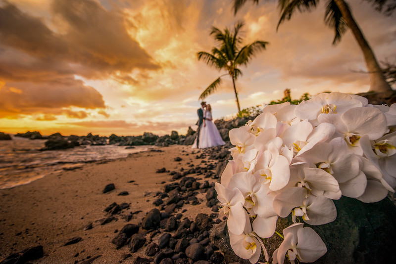 maui-wedding-photographer-gordon-nash-57.jpg