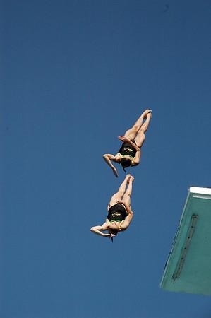 2008 High Dive Champions